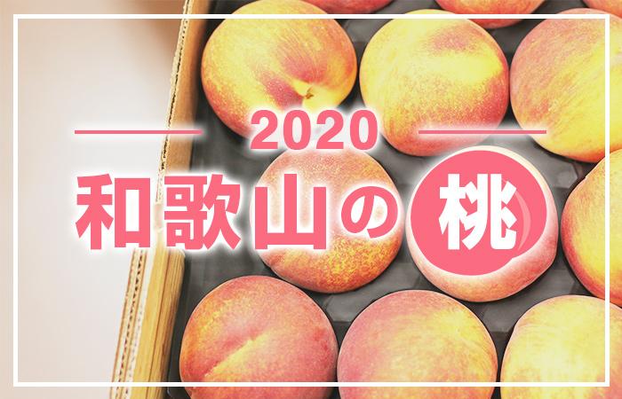 【2020】7月下旬に和歌山県の「あら川の桃」を購入したので、直売所をご紹介します!